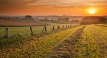 Vlaamse Ardennen 2 (212 x 116)