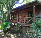Hotel Mango Inn - Honduras