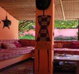 baobab-belge-06-630x300