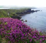 ierland-zomer-2012-208